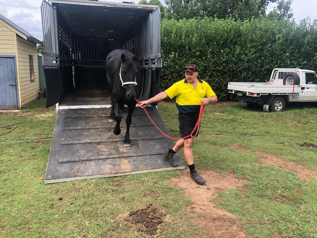 photo of Darren Bell leading horse down ramp off MHT truck